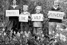 The earth laughs in flowers.  -ee cummings / by Katie Crawford