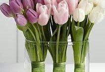 tulipany dekoracja