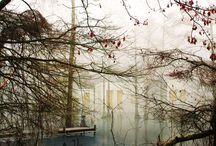 Visualisierung / by Vera Wilms