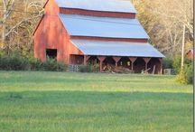 Barns / by Cherie Stout Davis