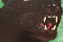 Cats on Artwork