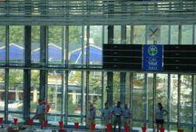 Entrenamiento Selección Americana de Natación / Entrenamiento de la Selección Americana de Natación en las piscinas de Mendizorroza. Vitoria