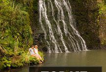 Nieuw-Zeeland / Zuid-Eiland