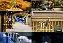 Phantastische Tierwesen und wo sie zu finden sind
