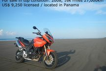 My horses / I am looking for a travel companion for a trip on 2 Triumph Tiger 1050 starting in Panama.  Start will be december 15 til march, 16.