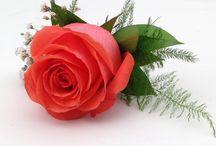 Wedding - Coral / Wedding flowers / by Sara Vega
