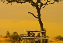 African National park