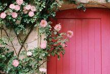 Door/Wall