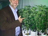 Medical Marijuana Monterey CA / medical marijuana monterey ca