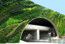 Vert Walls