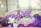 flowers / by nancy park
