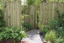 Privacy/Fence/Hedges