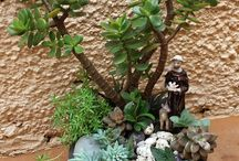 míni jardins