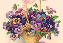 Canastas Florales