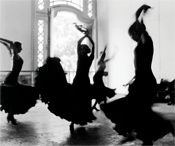 Flamenco Vive!