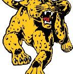 Wentworth Leopards Div. III