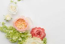 Floral Art that Inspires