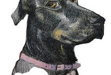 Dogs and Puppies art by Monica Batiste / Drawings and paintings of our dogs