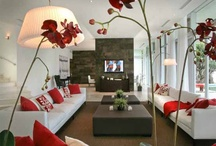 Red Living Room / Looking for red living room color ideas. Check our color ideas, furniture and decor ideas for red living room.