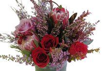 H.J.Benken's Holiday Flowers Benkens.com