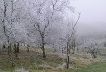 A frosty morning in Derbyshire Holiday Cottage