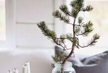 Jul / Scandinavian Christmas