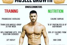 Mixture of muscle pics