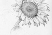 Art - Pencil / by Kathleen Brown