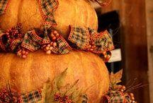 ♥ Pumpkin  ♥ / by RichmondMom