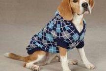 Funny Cutes Beagle Dog Clothes 2016