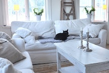 Lounge / Vintage shabby chic