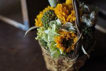 Dryflower / 0