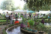 Perugia Flower Show 2015 / Mostra Mercato di Piante Rare e Inconsuete