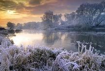 Winter / by Vanessa Brinon