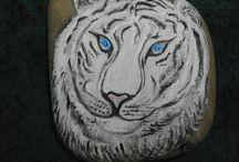 pedras / pedras pintadas
