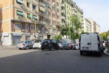 Disinfestazioni Roma / Disinfestazioni insetti striscianti e alati Roma