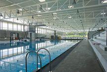 수영 경기장