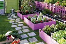 amenajări grădini
