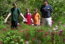 Children at Fernwood