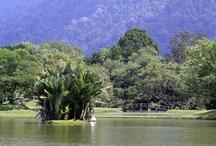 Taman Tasik, Taiping
