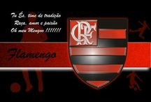 Dia do Flamenguista / Uma vez flamengo sempre flamengo.. 28 dia do flamenguista.