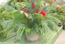 holiday spirit / by Aimee Bonn