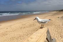 Australie ☀️ / Wat een fantastisch avontuur...❤️ australie