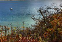 Cape Cod / Cape Cod, MA / by Hristo Kanchev