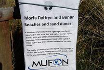 Galles del Nord. Intensa attività' UFO nei cieli sovrastanti una spiaggia affollata da nudisti.