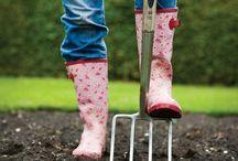 Gardening / Organic gardening. Edible landscaping. Permaculture. Backyard ecosystems.