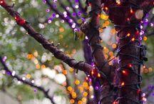 26 Bezaubernde Und Gespenstische Möglichkeiten, Bäume Für Halloween Zu Verzieren