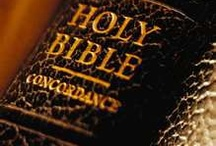 Books Worth Reading / The Bible / by Rose Mary Broussard