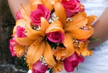 Weddings / by Maribel