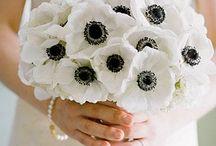 anemony bukiet ślubny